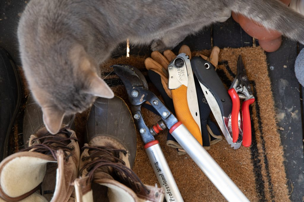 variety of pruning tools with a pair of LL bean boots and a gray cat